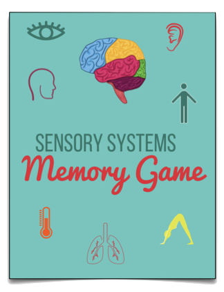 Sensory Systems Memory Game